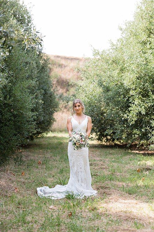 central-hawkes-bay-wedding-wallingford-chelsea-pedram-070